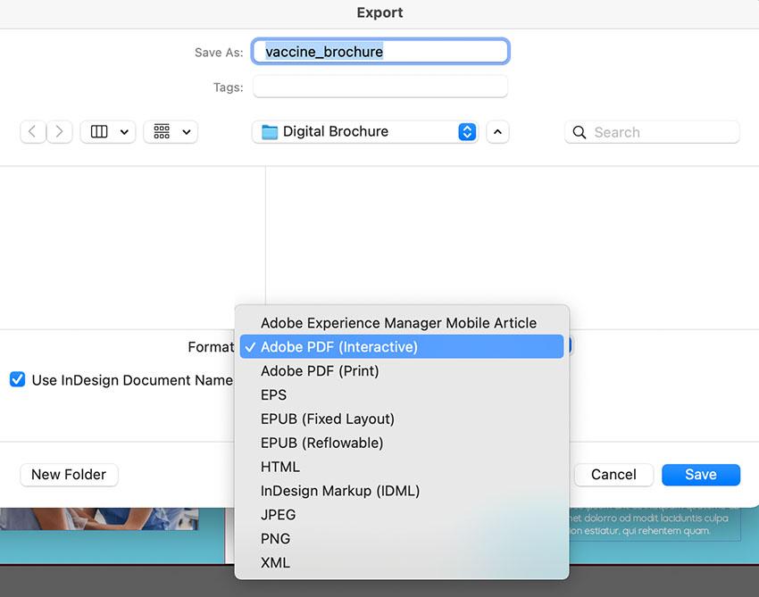 indesign interactive PDF