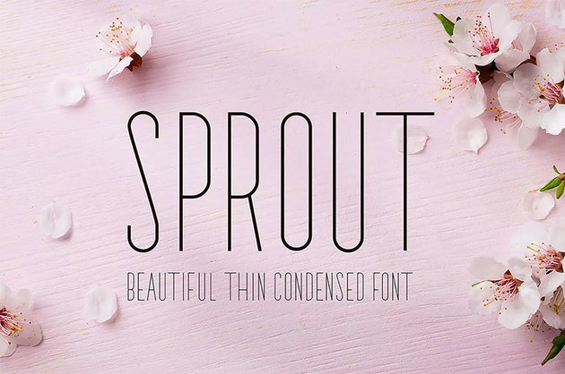 Sprout - Rounded Sans Serif Font