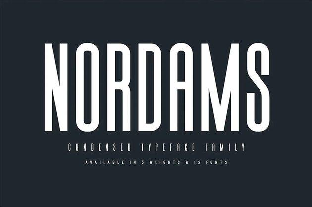 Nordams Popular Sans Serif Fonts