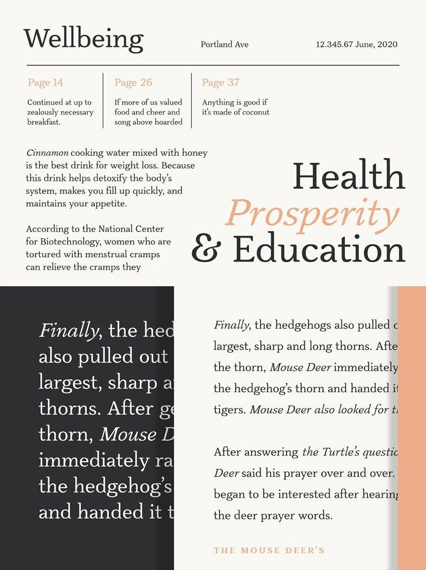 slippery font styles classic warm readable text family book web classy similar to garamond