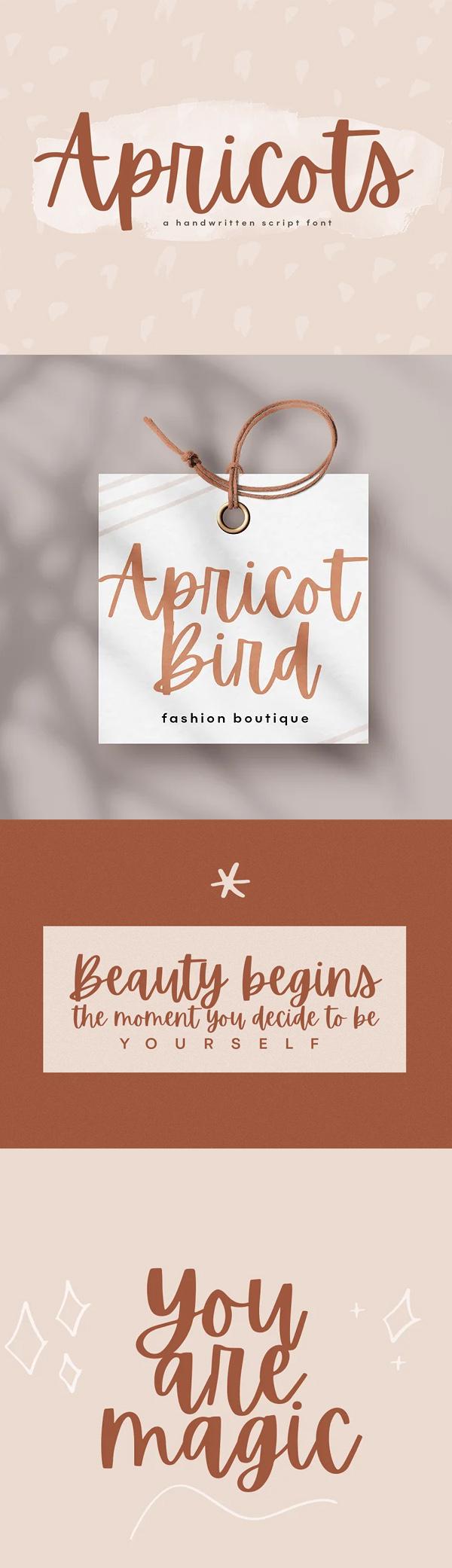 Apricots - A Handwritten Script Font Free Font