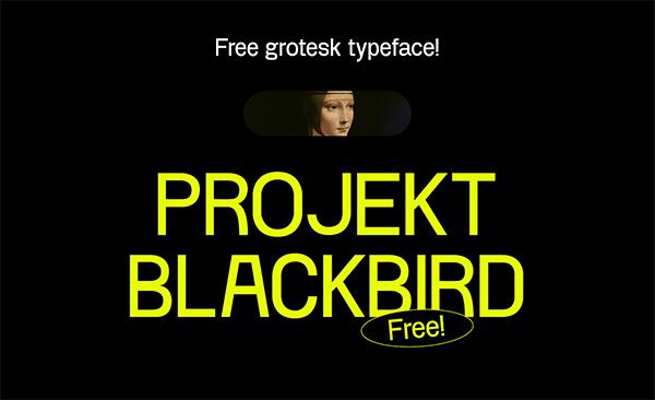 Project Blackbird Free Font