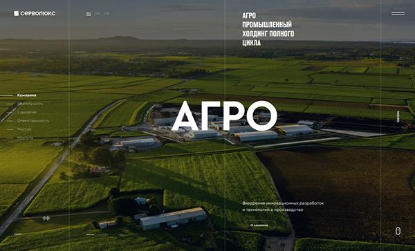 Award Winning Website Design Examples 2021 - 23