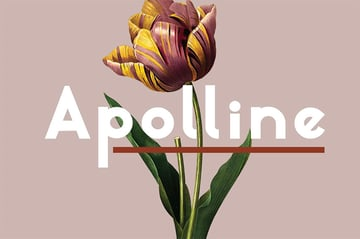 Apolline Popular Sans Serif Font
