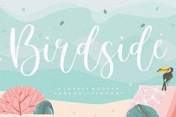 Birdside YH - Wedding Script Font