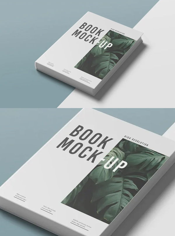 Editable Book Mockup