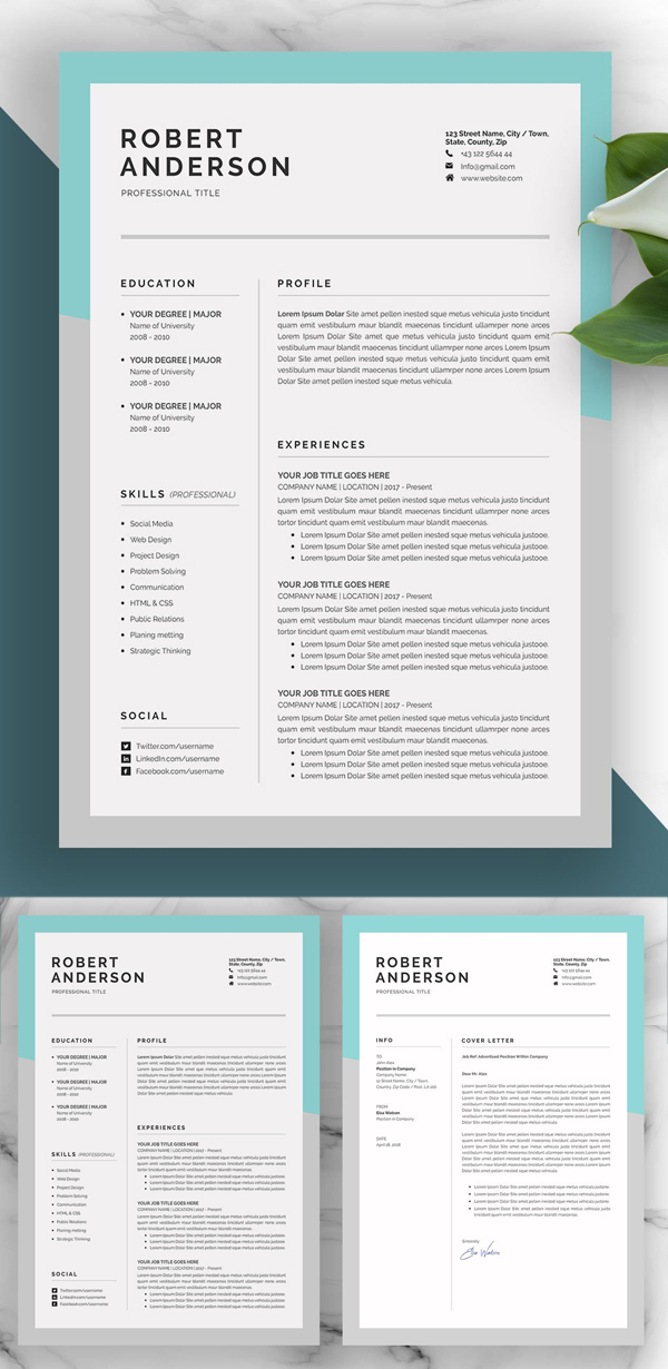 Perfect Resume / CV Cover Letter