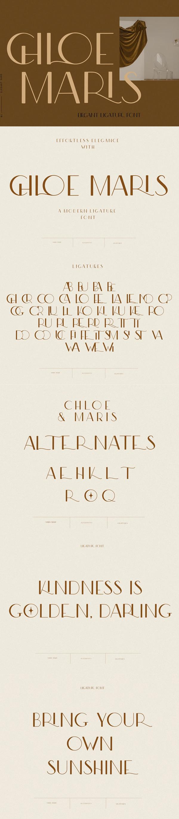 Modern Ligature Sans Serif Font