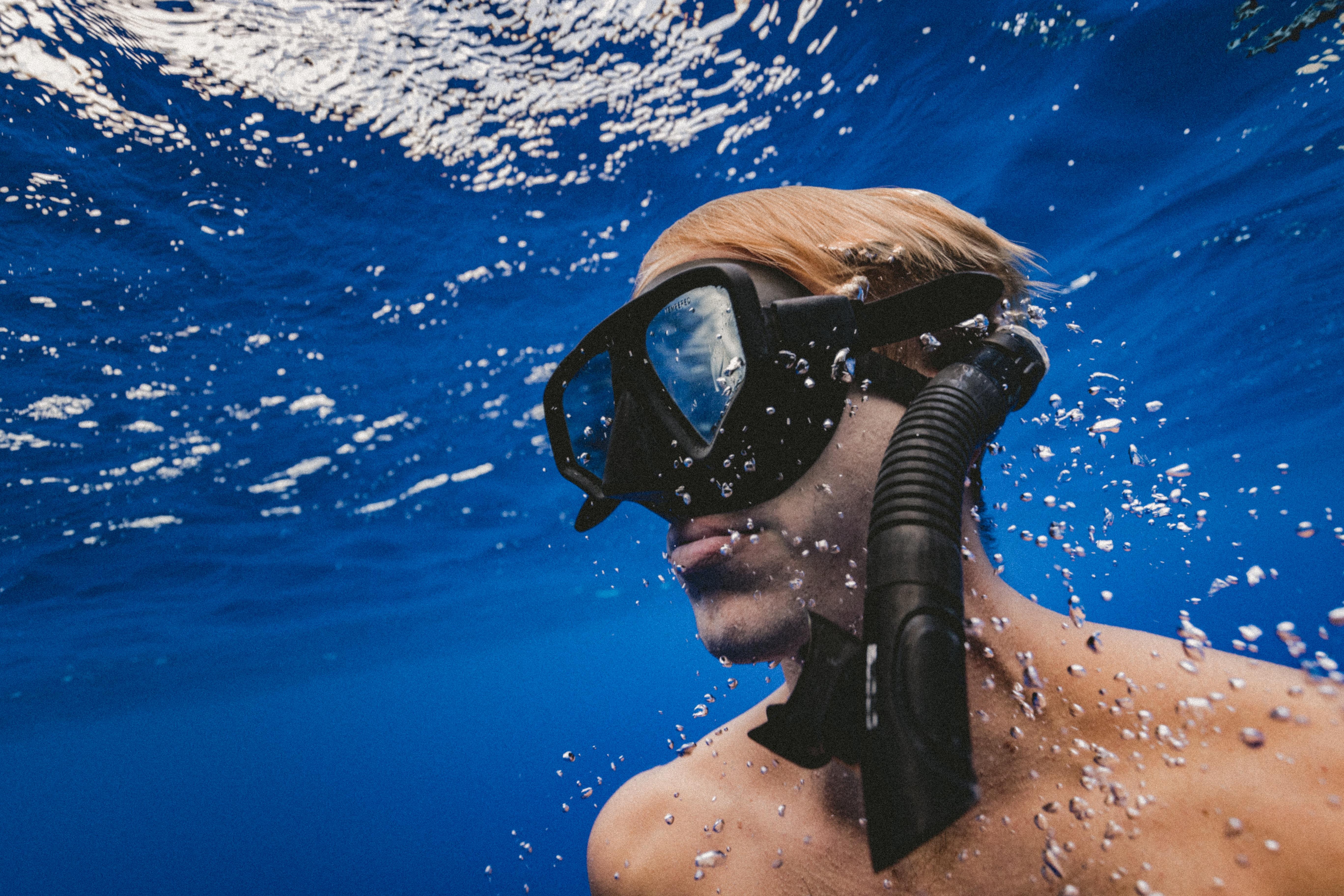 summer stock photos diver