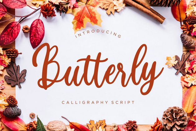 Butterly Calligraphy Script