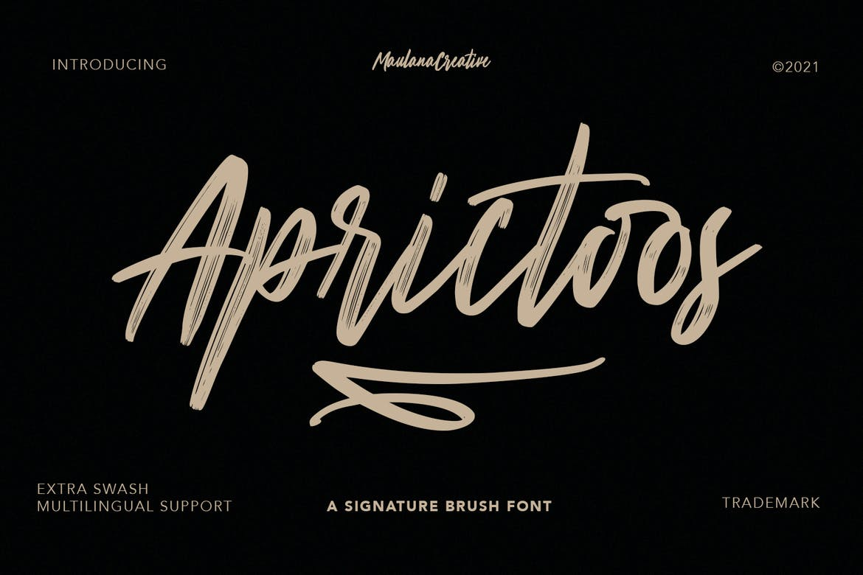 Aprictoos Signature Brush Font Font