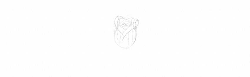 How to Draw a Rose With Pencil Tutorial rose sketch