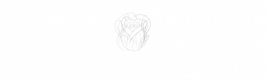 How to Draw a Rose With Pencil Tutorial rose sketch in perspective