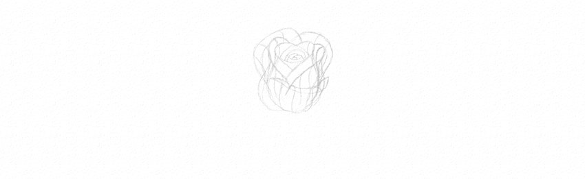 How to Draw a Rose Step by Step Tutorial draw rose petals in perspective