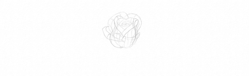 How to Draw a Rose Step by Step Tutorial add petals to a rose