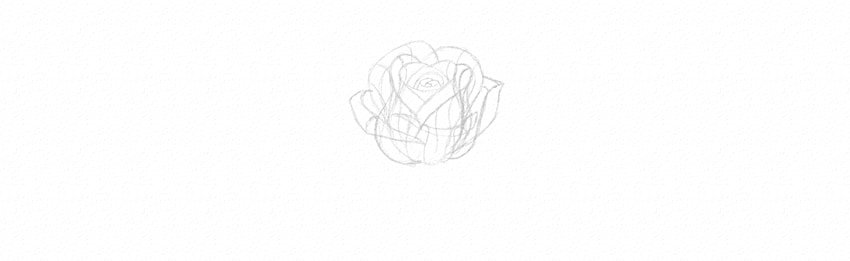 How to Draw a Rose Step by Step Tutorial half blown rose