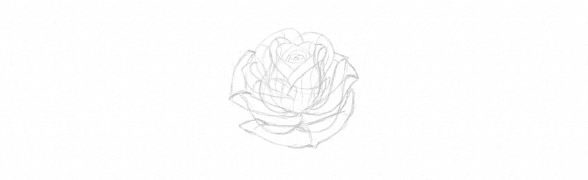 How to Draw a Rose Step by Step Tutorial sketch rose petals