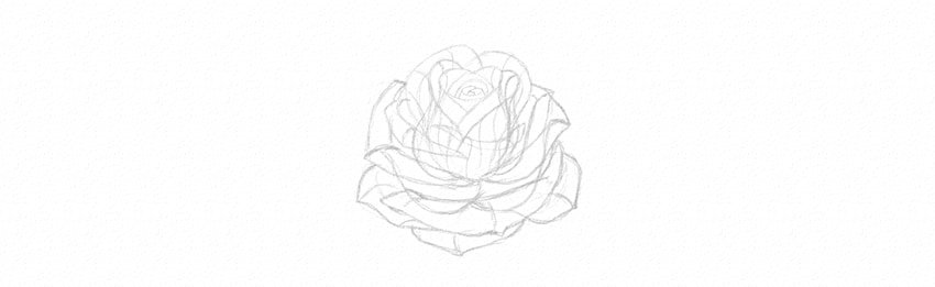 How to Draw a Rose Step by Step Tutorial finish rose petals
