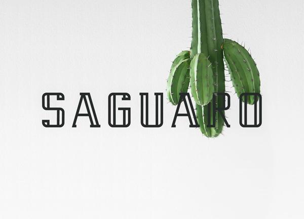 Saguaro Free Font