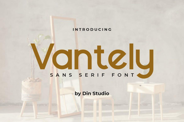 Vantely-Elegant Sans Serif Font Font
