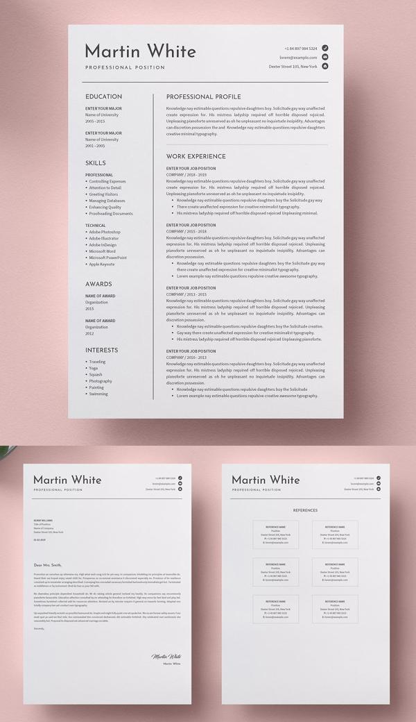 Best Clean Word Resume