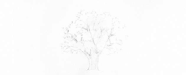 How to Draw Trees Tutorial shade oak tree trunk drawing