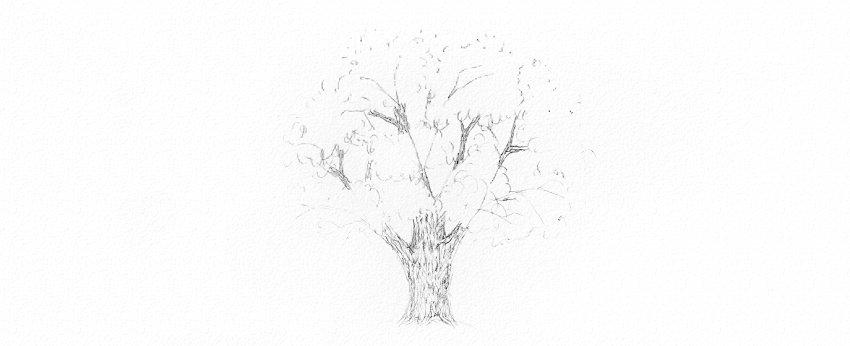 How to Draw Trees Tutorial realistic oak tree bark drawing