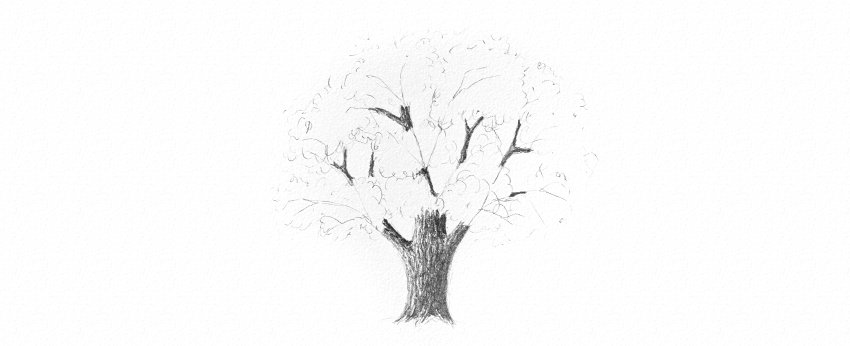 How to Draw Trees Tutorial shade realistic oak tree trunk drawing with soft pencils