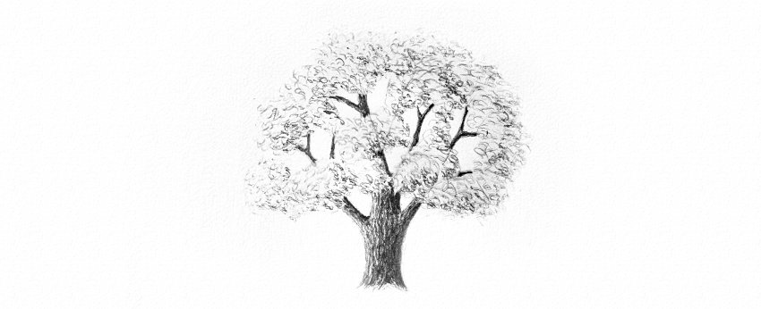 How to Draw Trees Tutorial shade realistic oak tree leaves drawing