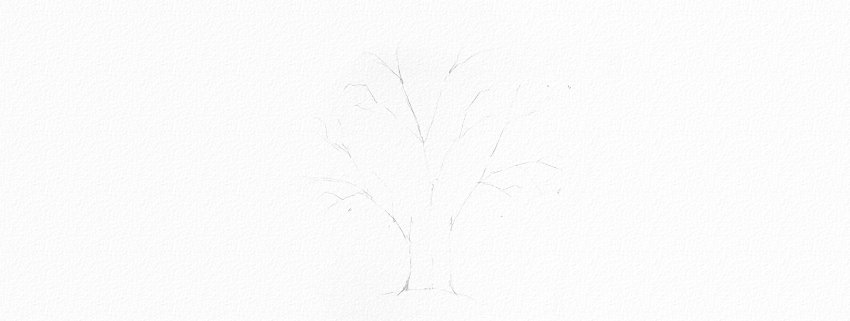 How to Draw a Tree Easy Tutorial oak tree crown drawing