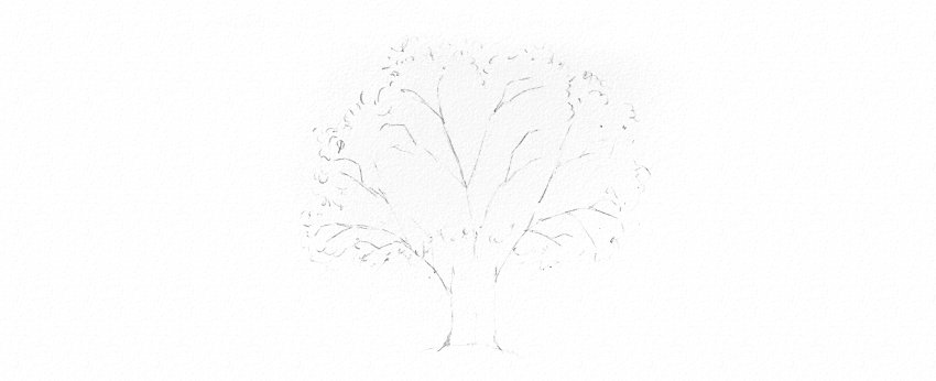 How to Draw a Tree Easy Tutorial oak tree crown and leaves drawing