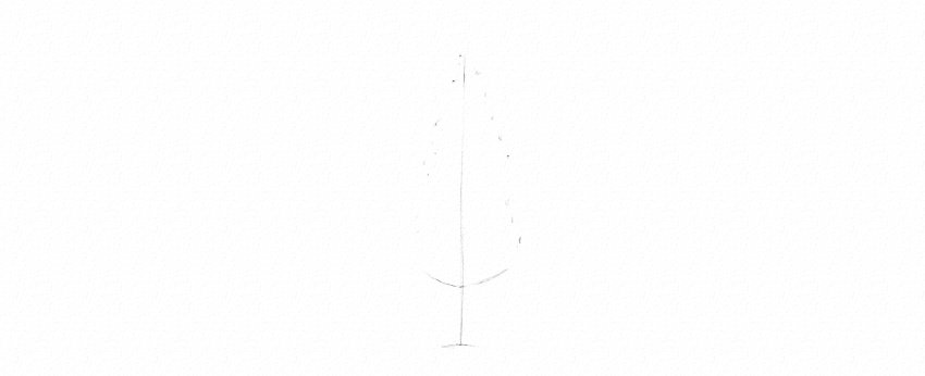 How to Draw Trees Tutorial realistic pine tree drawing