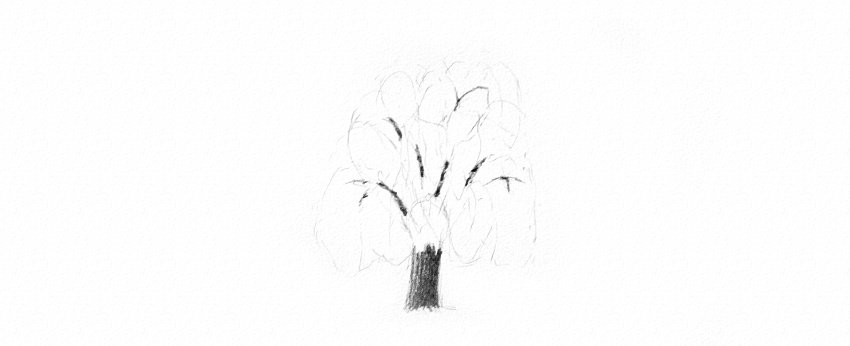 How to Draw a Tree Easy Tutorial shade weeping willow tree trunk drawing
